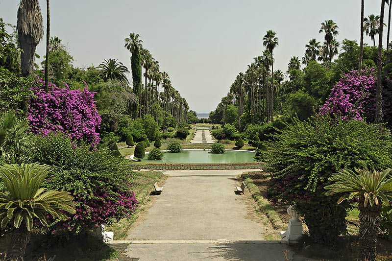 جمال الجزائر العاصمة 4273.imgcache